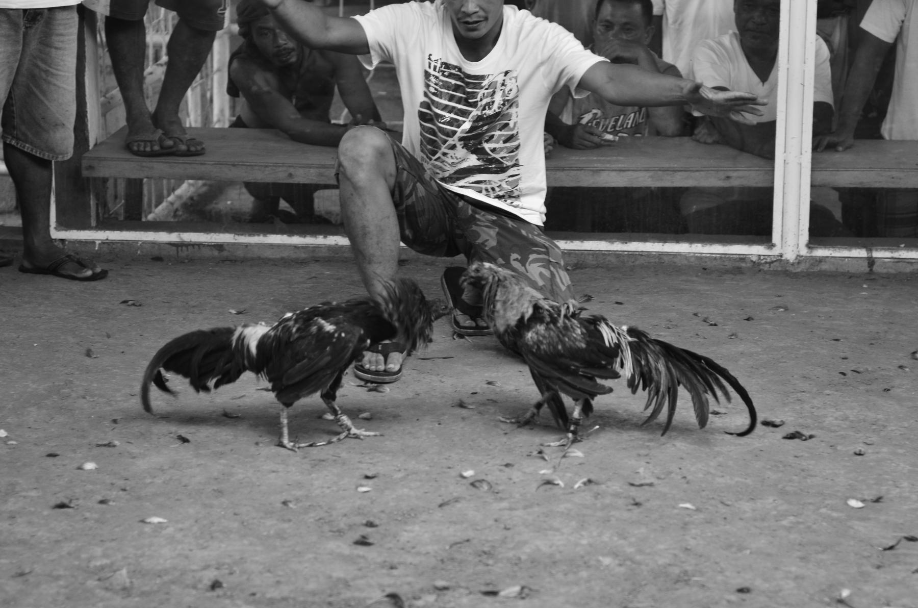 Malapascua_Phillipines_23072011_0510