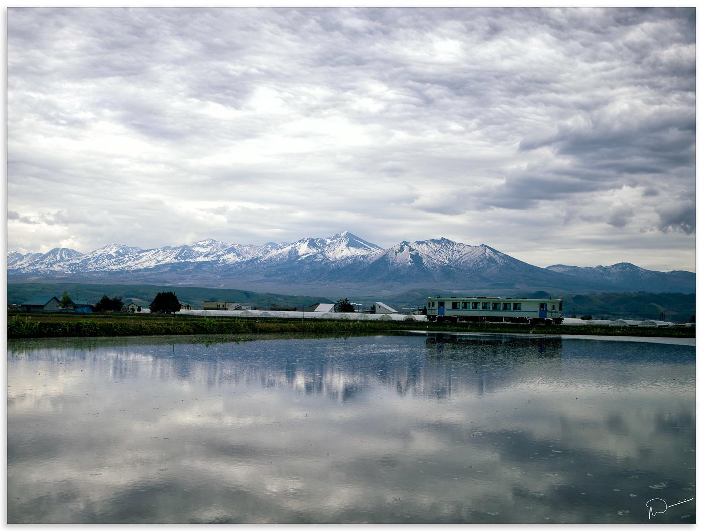 Neils-Photography-Japan-2019-0005676-Edit-Edit
