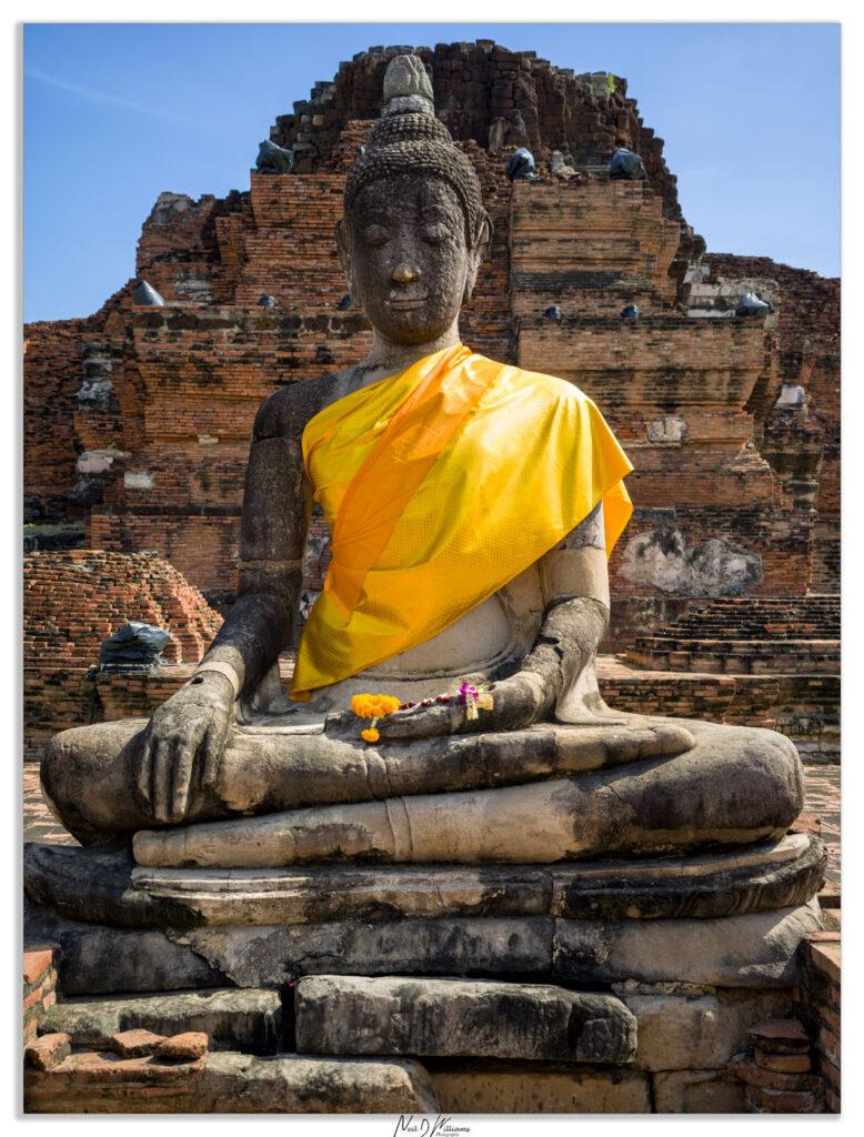 Neils-Photography-Northern-Thailand-061220_0033-778x1024.jpg